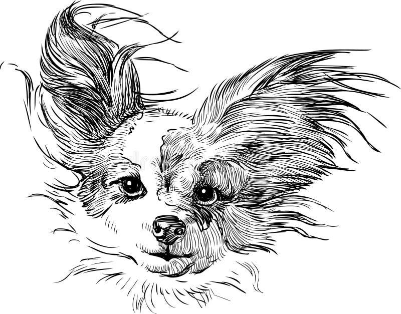 Chihuahua illustrazione di stock