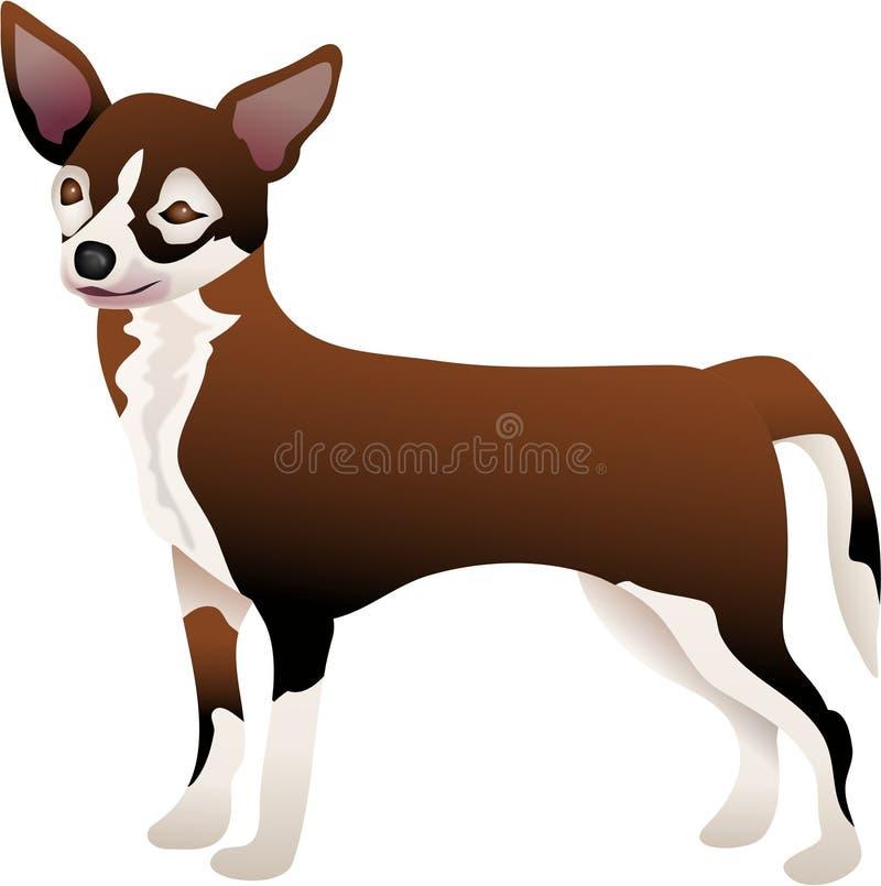 Chihuahua ilustración del vector