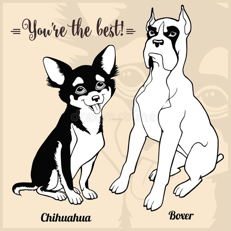 Chihuahua, Boxer - set with dog breeds, cartoon pictures royalty free illustration