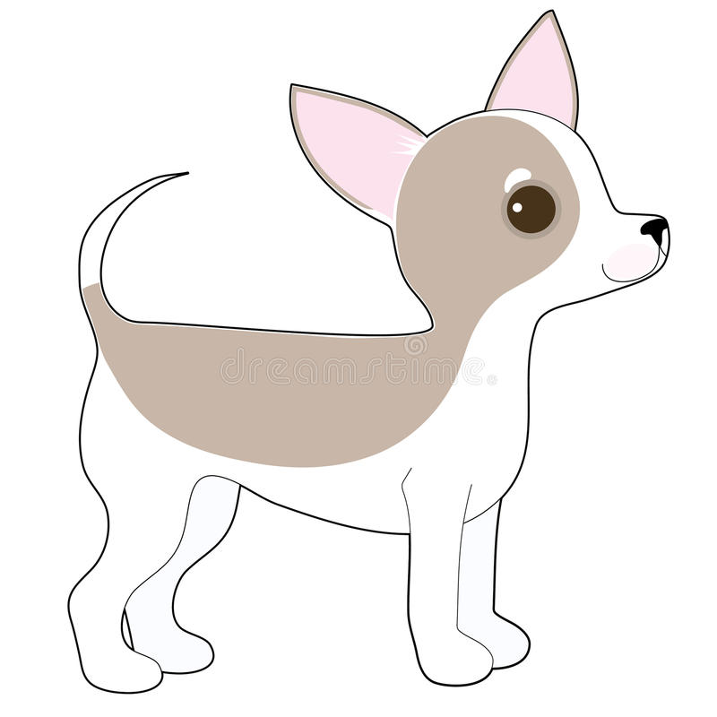 Chihuahua. A cartoon drawing of a cute little Chihuahua stock illustration