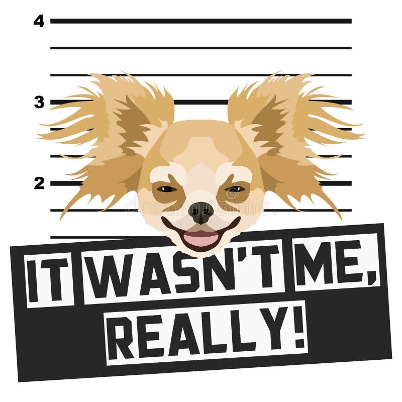 Chihuahua de la fotograf?a de detenido del Mugshot stock de ilustración