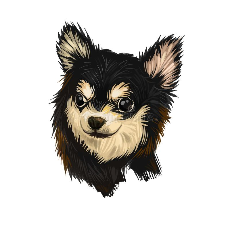Chihuahua dog breed isolated on white background digital art illustration. Cute pet hand drawn portrait. Graphic clipart design vector illustration