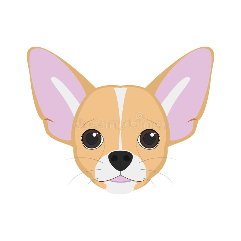 Chihuahua dog vector illustration. Chihuahua dog on white background vector illustration stock illustration