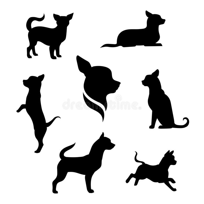 Chihuahua dog vector silhouettes. Chihuahua small dog vector icons and silhouettes. Set of illustrations in different poses stock illustration