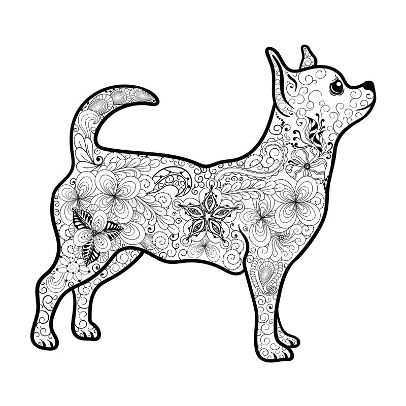 Chihuahua doodle. Illustration Chihuahua was created in doodling style in black and white colors. Painted image is isolated on white background. It can be used stock illustration