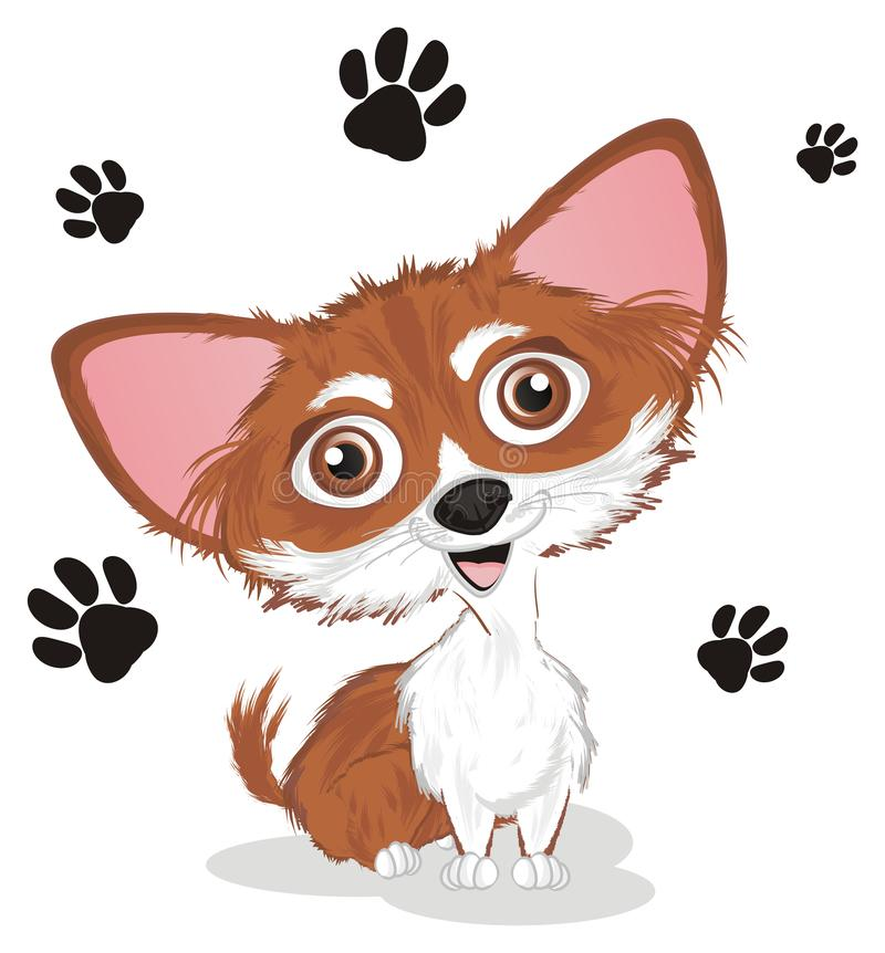 Chihuahua en sporen royalty-vrije illustratie
