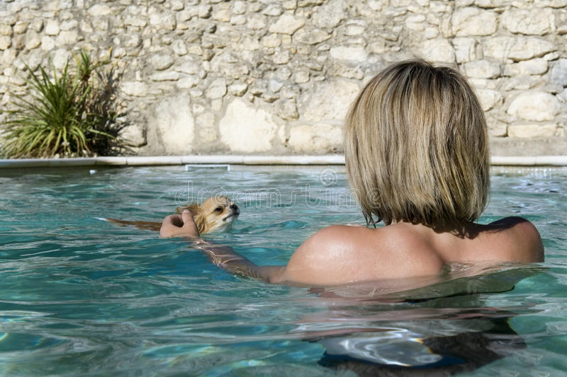 Chihuahua And Girl In The Water Royalty Free Stock Images