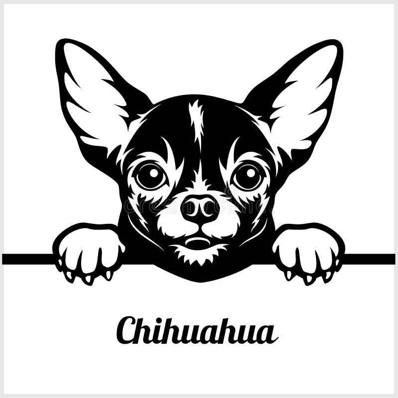Chihuahua - het Gluren Honden - - het hoofd van het rassengezicht op wit wordt geïsoleerd dat royalty-vrije illustratie