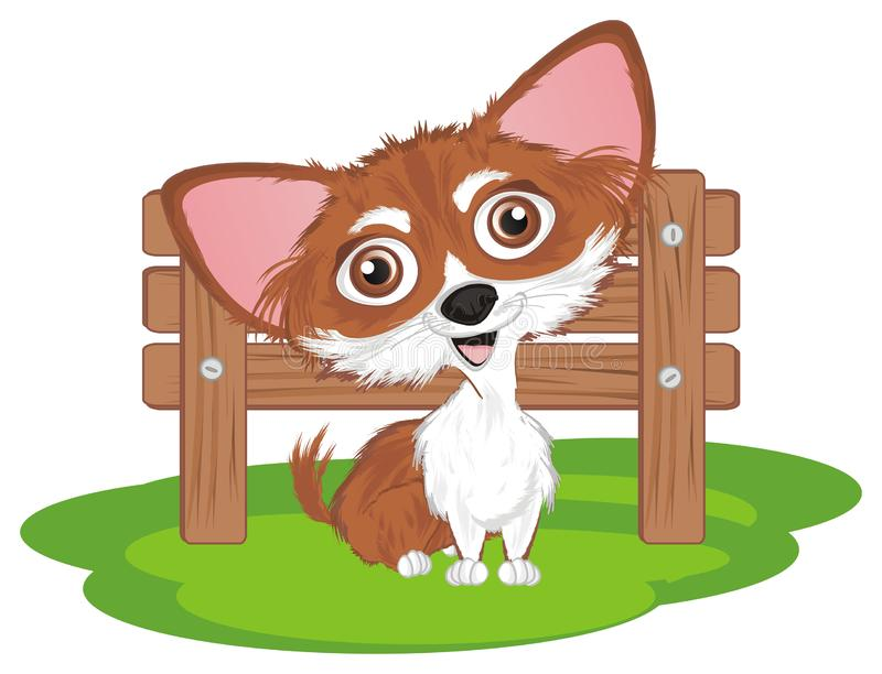 Chihuahua op straat royalty-vrije illustratie