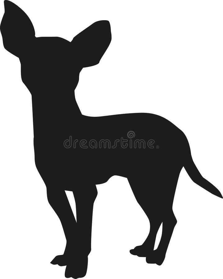 Chihuahua vector. Dog pet Chihuahua vector silhouette royalty free illustration