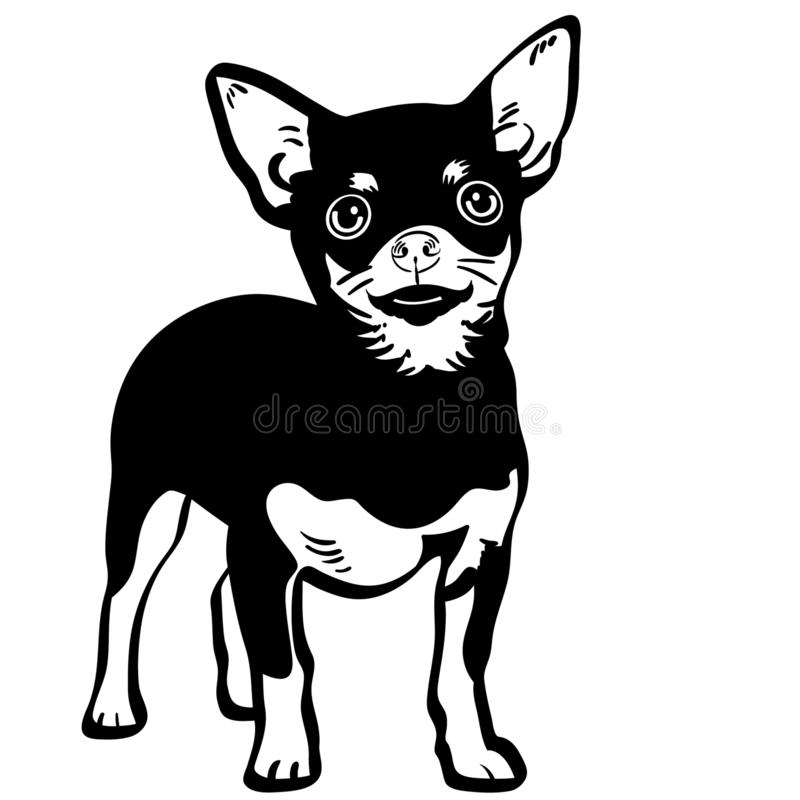Free Chihuahua Vector Eps Hand Drawn Crafteroks Svg Free, Free Svg File, Eps, Dxf, Vector, Logo, Silhouette, Icon, Instant Download, Di Stock Photos - 146467403