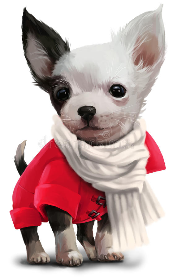 Chihuahua watercolor painting. Chihuahua in a jacket and scarf stock illustration