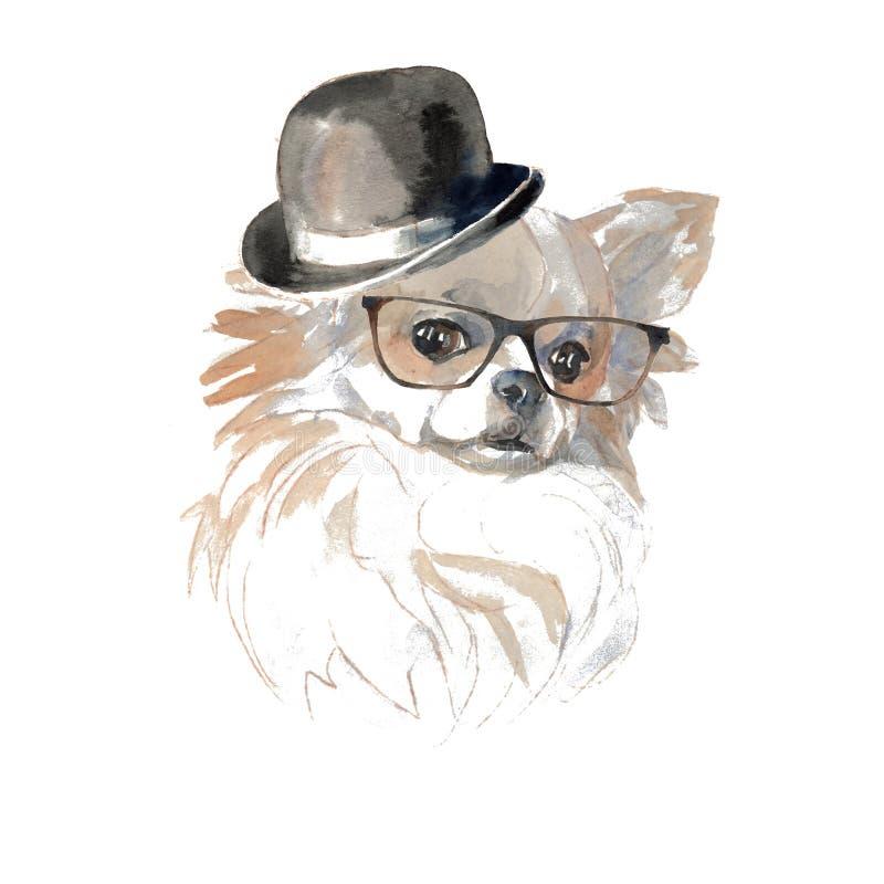 Chihuahuahund - handgemalt, lokalisiert auf weißem Hintergrund wate stock abbildung