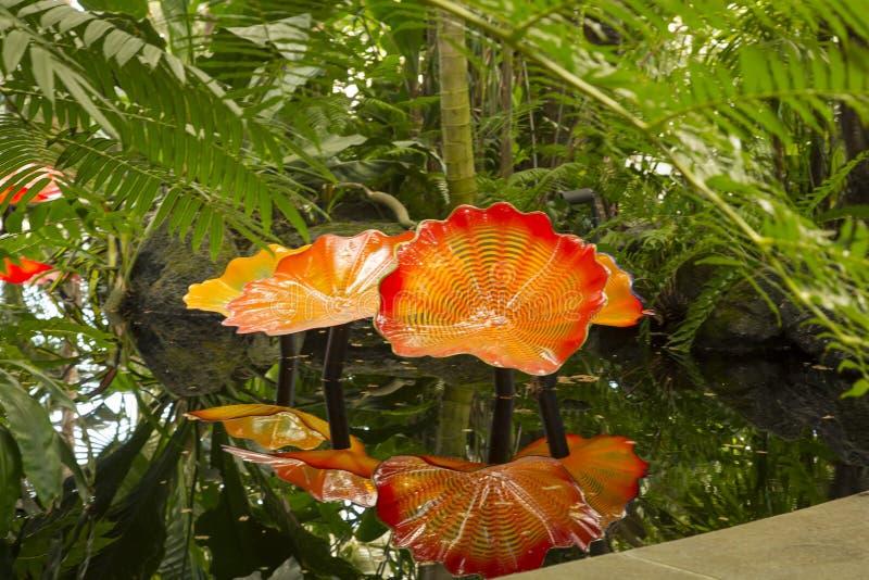 Chihuly玻璃百合在池塘 库存图片