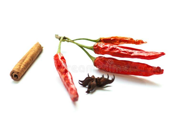 Chiili e especiarias secos vermelhos foto de stock royalty free