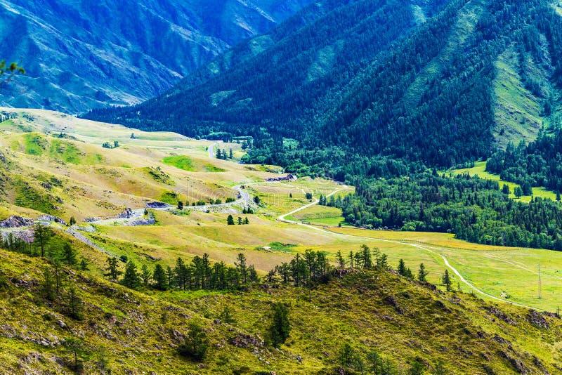 Chike - Taman bergpasserande Altai republik, Ryssland royaltyfri fotografi