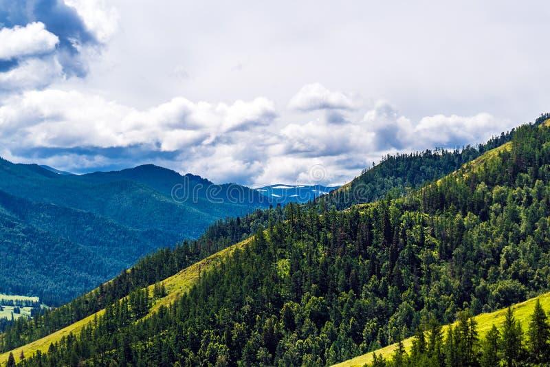 Chike - Taman bergpasserande Altai republik, Ryssland arkivbild