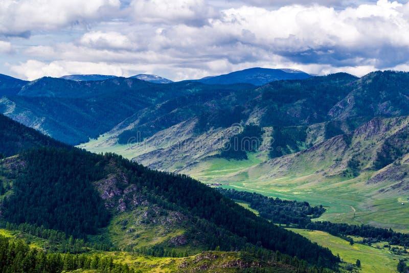 Chike - Taman bergpasserande Altai republik, Ryssland arkivbilder