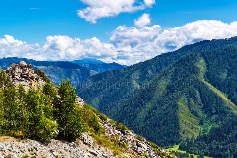 Chike - Taman bergpasserande Altai republik, Ryssland royaltyfria foton