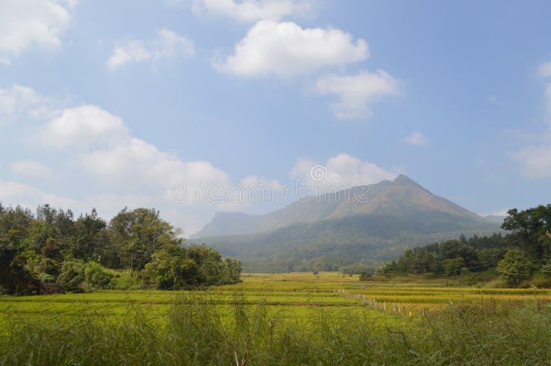 Chikmagalur, station de colline dans Karnataka photographie stock