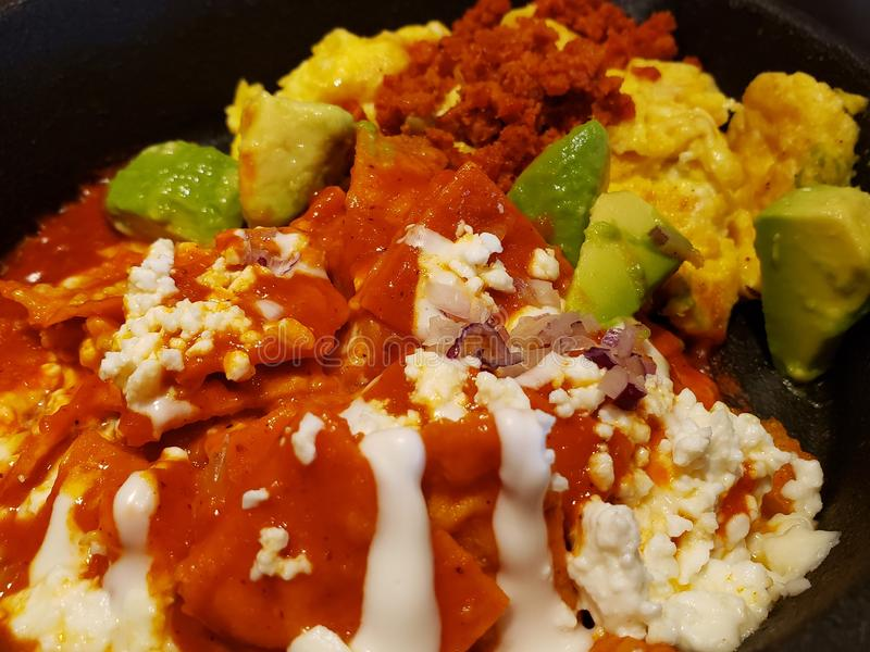 Chilaquiles in hot red sauce, cream, cheese and avocado cuts, traditional mexican food royalty free stock image