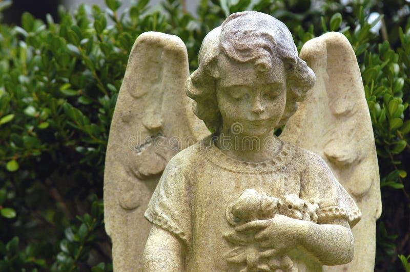 Child angel stock image