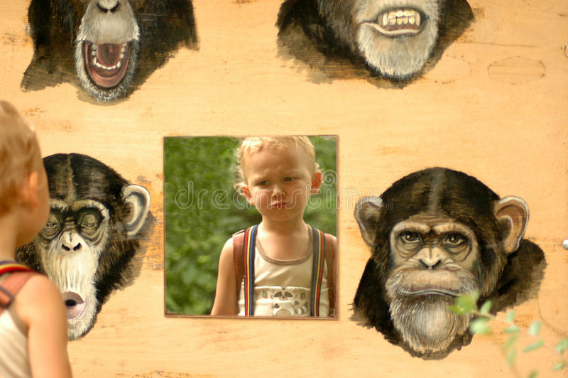 Child and ape. Theory of Evolution. Clear proof stock photo