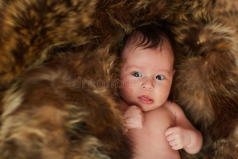 A newborn is lying on the fur and looking into the camera - a fur coat and a baby royalty free stock photography