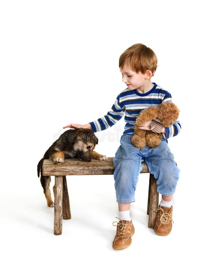 Child on bench and puppy stock image