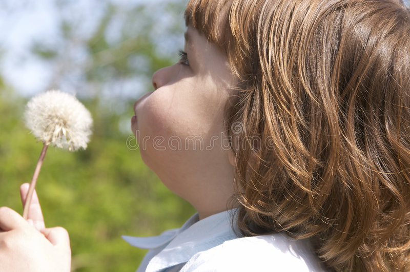 Download Child and blow-ball stock photo. Image of dream, natural - 2560880