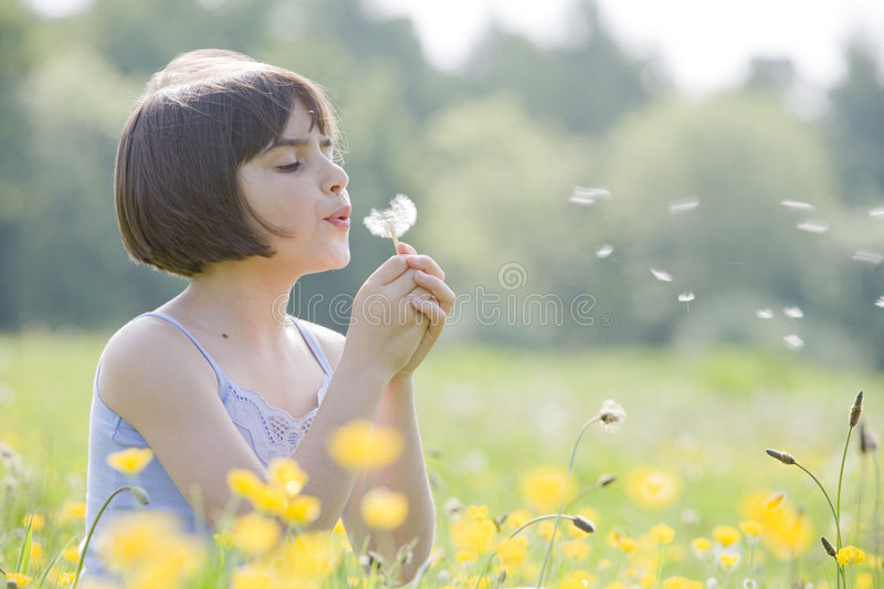 Child blowing dandelion2956 royalty free stock photography
