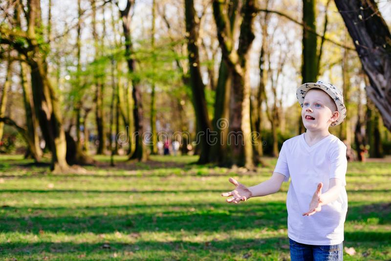 Child boy catching ball on green grass in park. royalty free stock photos
