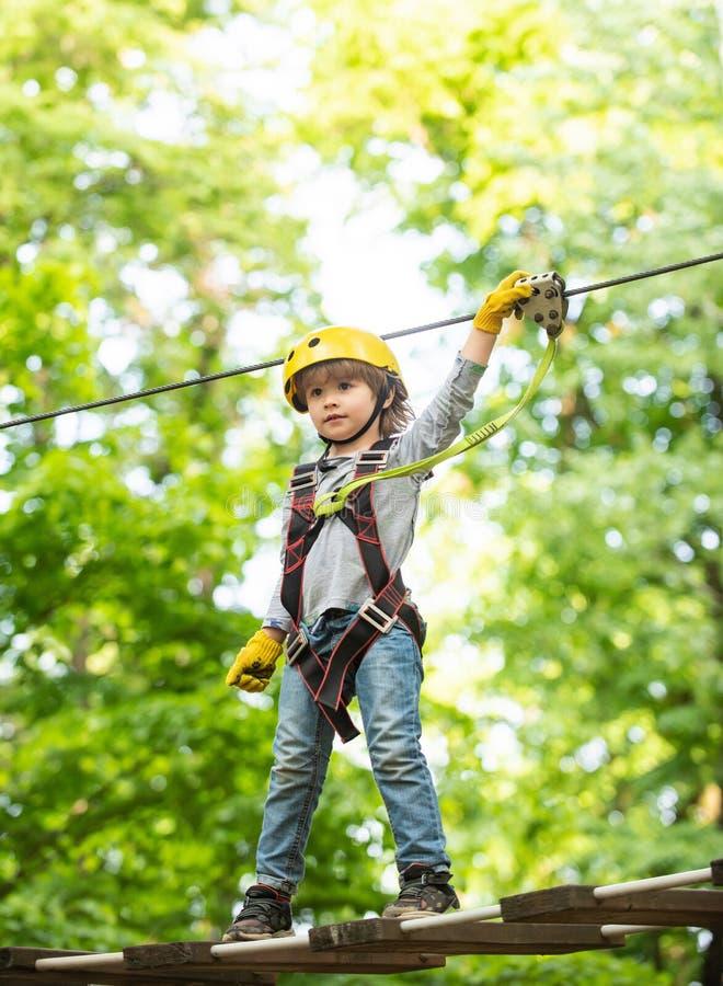Child boy having fun at adventure park. Carefree childhood. Child climbing on high rope park. Happy Little child. Climbing a tree. Go Ape Adventure stock image