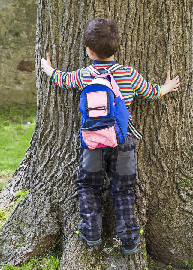 Child boy hugging tree trunk stock photo
