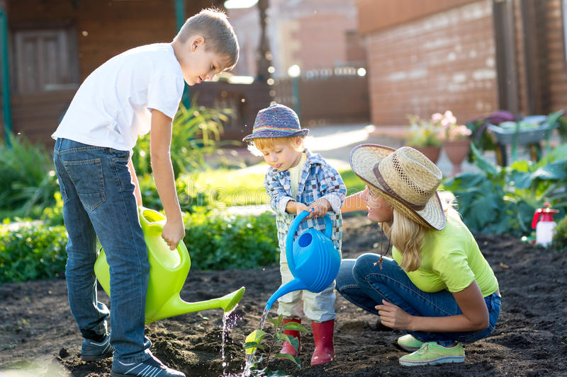 Child boy watering plant with his mother and brothers in garden royalty free stock photos
