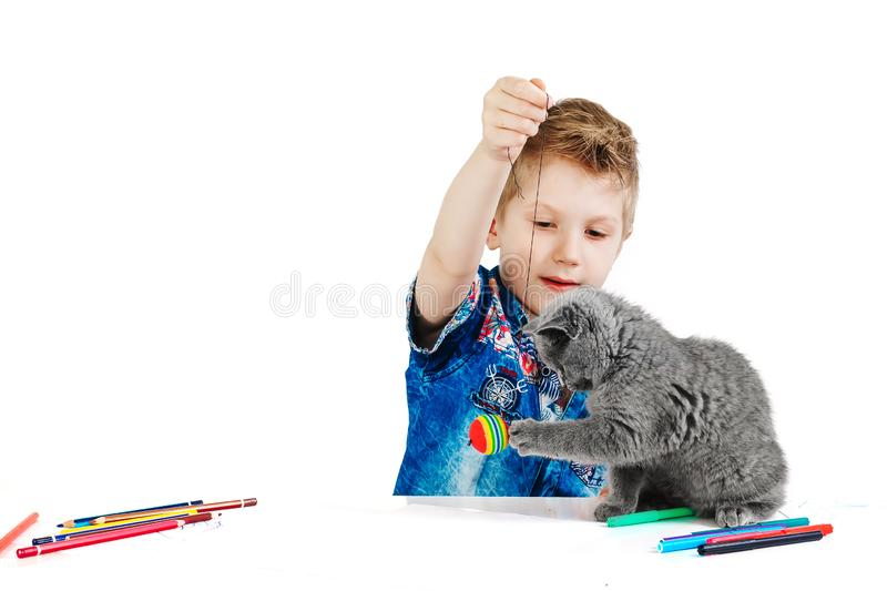 Child, boy 6 years old playing with a cat on a white background, isolate. The concept of an animal is a human friend.  stock photography