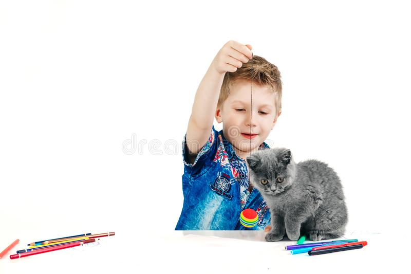 Child, boy 6 years old playing with a cat on a white background, isolate. The concept of an animal is a human friend.  stock image