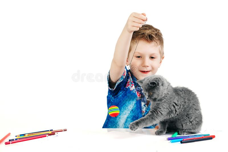 Child, boy 6 years old playing with a cat on a white background, isolate. The concept of an animal is a human friend.  stock images