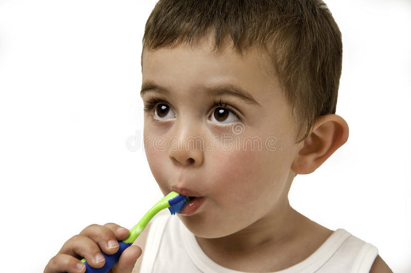 Child brushing teeth. Portrait of a young toddler brushing his own teeth and being responsible for his dental health isolated on a white background royalty free stock image