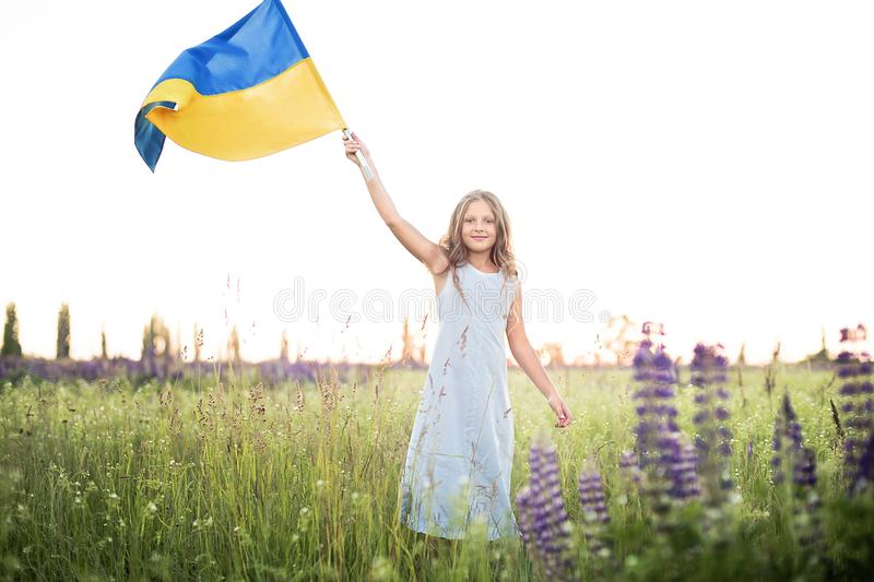Child carries fluttering blue and yellow flag of Ukraine in lupine field. Ukraine& x27;s Independence Day. Flag Day stock photo