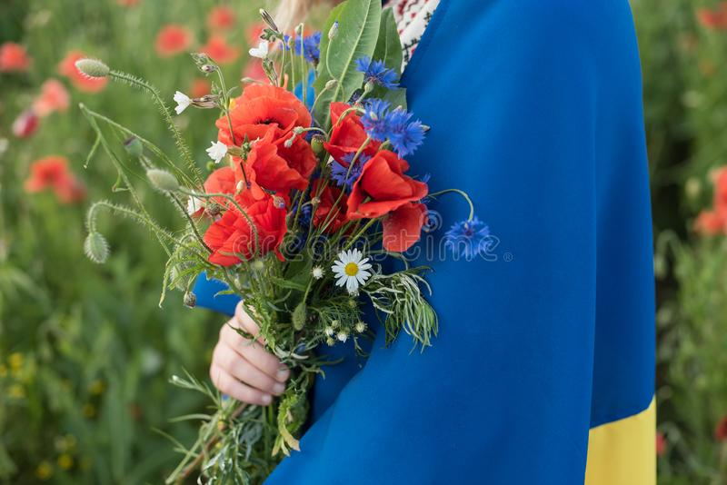 Child carries fluttering blue and yellow flag of Ukraine in poppy field. Ukraine& x27;s Independence Day. Flag Day. Background, beautiful, beauty, caucasian stock photography
