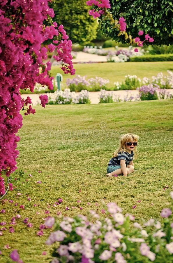 Child Childhood Children Happiness Concept. little boy on grass in summer glasses near pink flowers stock photography