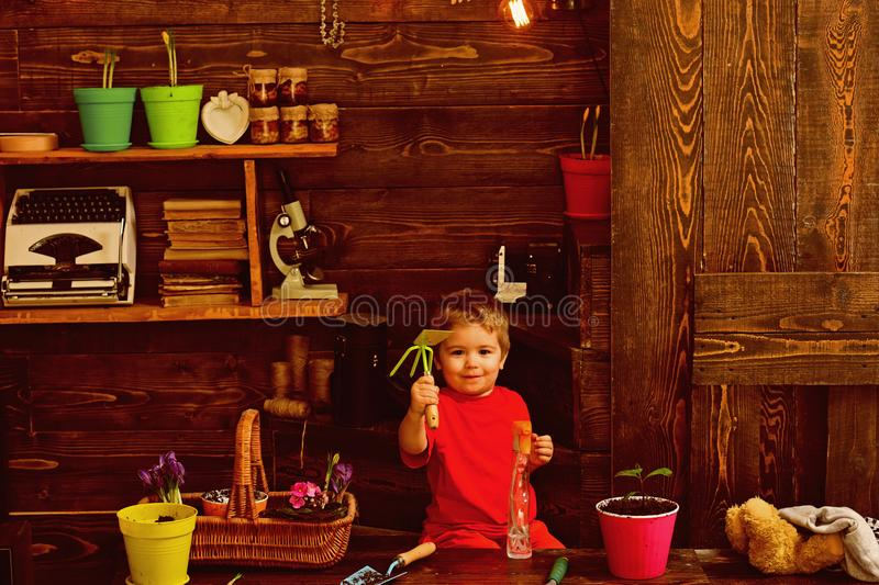 Child concept. Little child with gardening tools. Cute child in garden shed. Happy child gardener stock photography