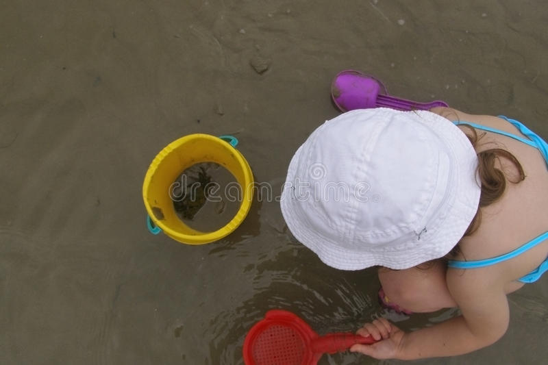 Child and crab. Toddler girl on the sandy beach, who caught a crab in the yellow beach bucket stock images