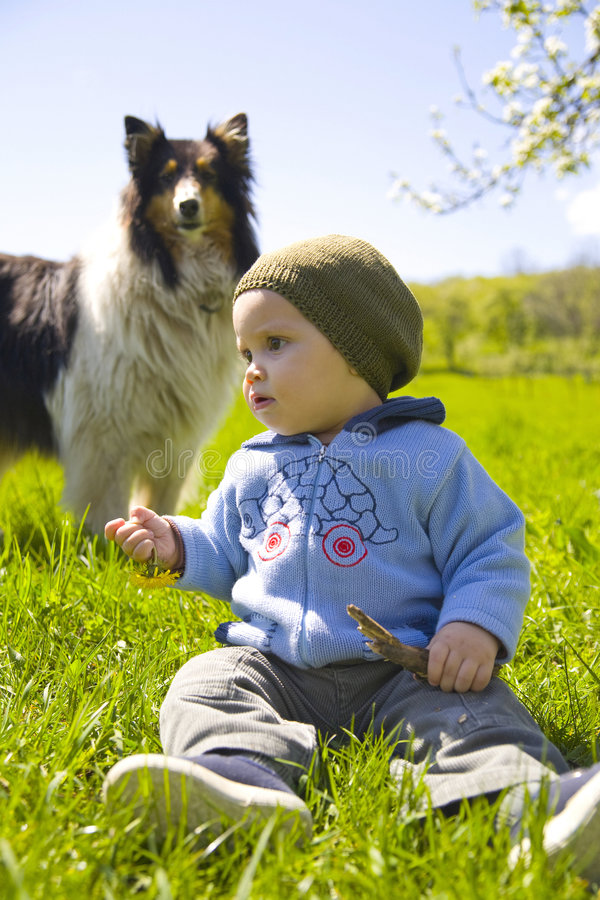 Child and dog in grass stock photo