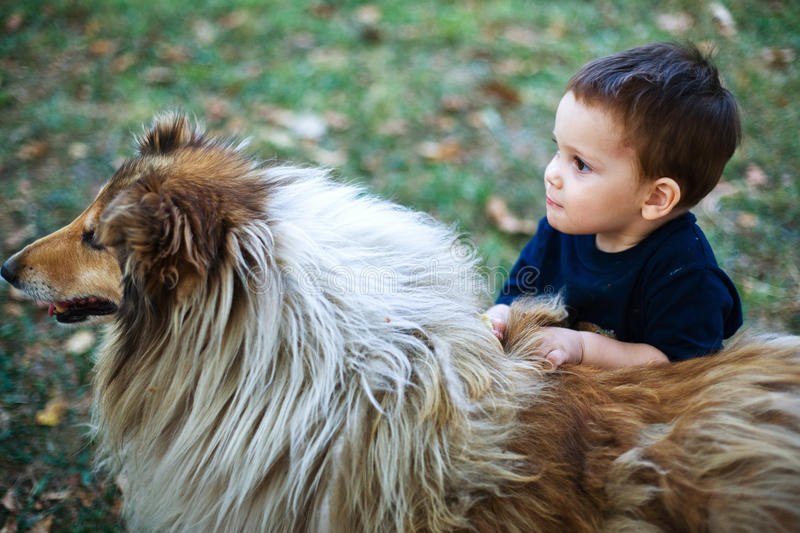Child with dog pet. Child holding his dog pet, outdoors in garden stock image