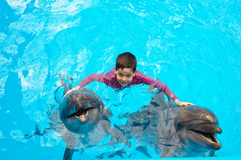 Child and dolphins. In swimming pool royalty free stock image