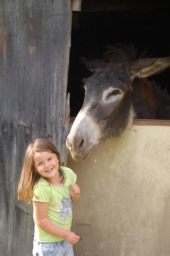Child and donkey. Donkey leaning out of its stable towards a little girl royalty free stock photos