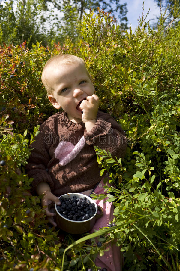 Child eating bilberries. Happy toddler sitting in the forest eating bilberries royalty free stock photos