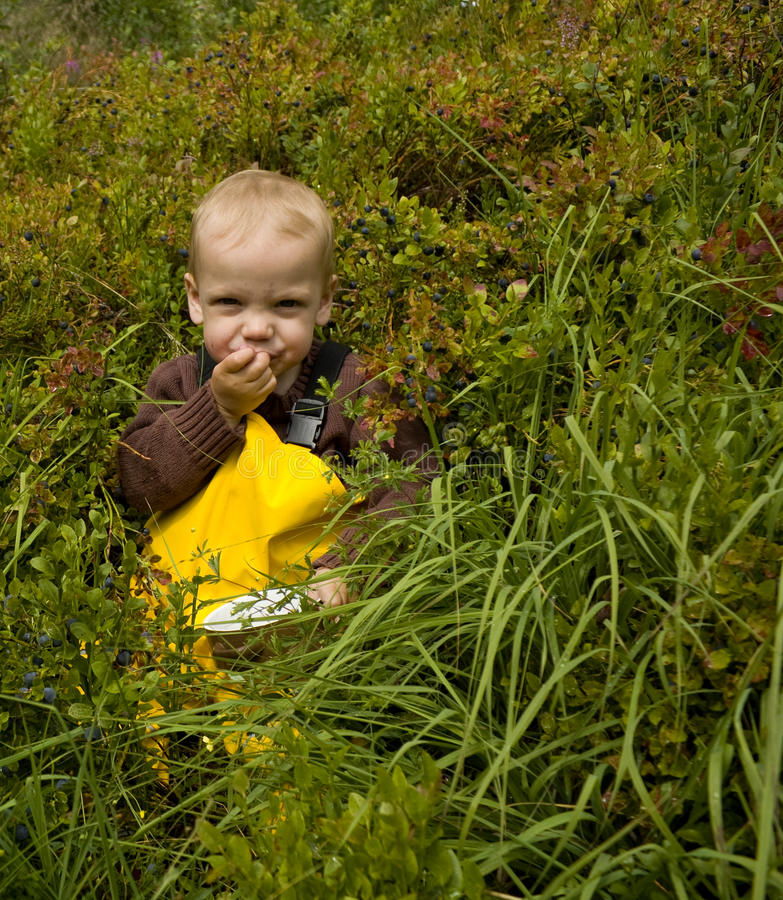 Child eating bilberries. Toddler sitting in the forest eating bilberries royalty free stock photography